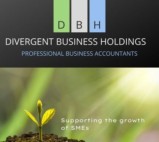 Divergent Business Holdings Aims To Offer Tailored Accounting Services