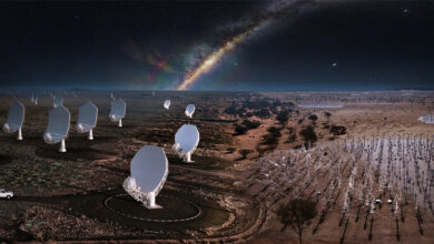 The Construction Of The Square Kilometre Array (SKA) Telescopes Has Been Approved In South Africa