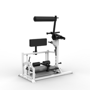 Arsenal Strength Reloaded Posterior Chain Developer