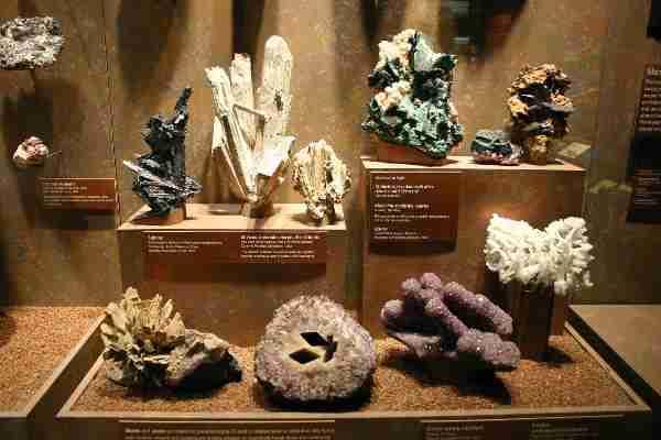 bruce museum