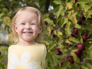 The Heart in Hand Preschool Harvest Festival