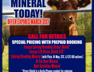 Quality-Plus-Feeds-MINERAL-AD-03-29-21