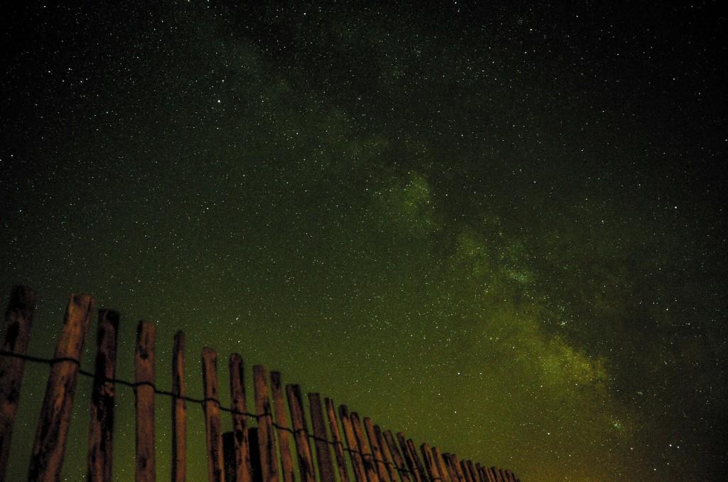 Cancer Night Sky Stars