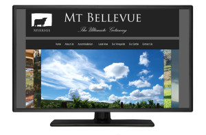 Portfolio-Image-Mt-Bellevue-Website