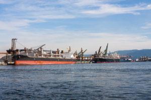 Cargo ships docked at the Port of Santos, Brazil