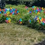 Pinwheel Garden Franciscan Health