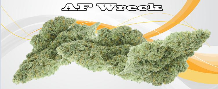 AF Wreck Banner