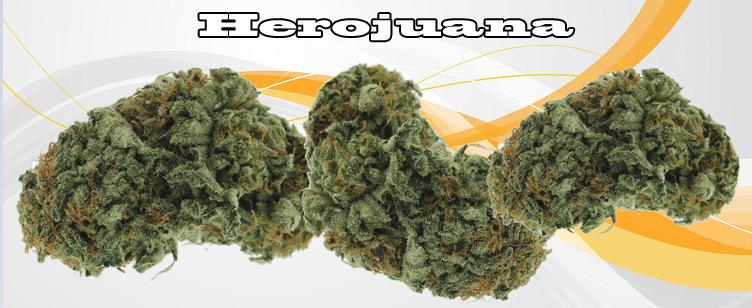 Herojuana Banner
