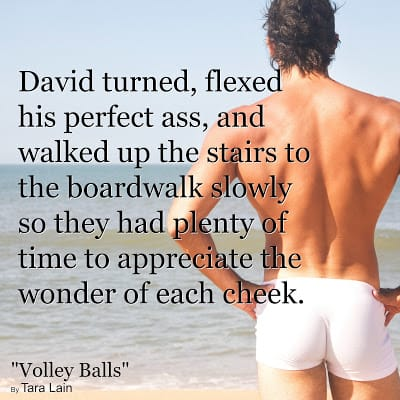 Graphic Teaser #1 Volley Balls by Tara Lain