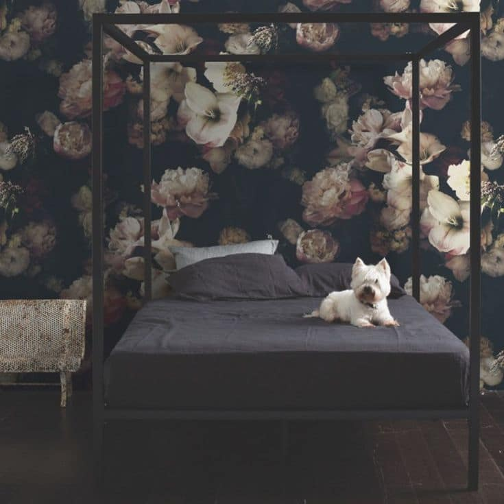 Rooms with Moody Schemes - Rich Floral Wallpaper