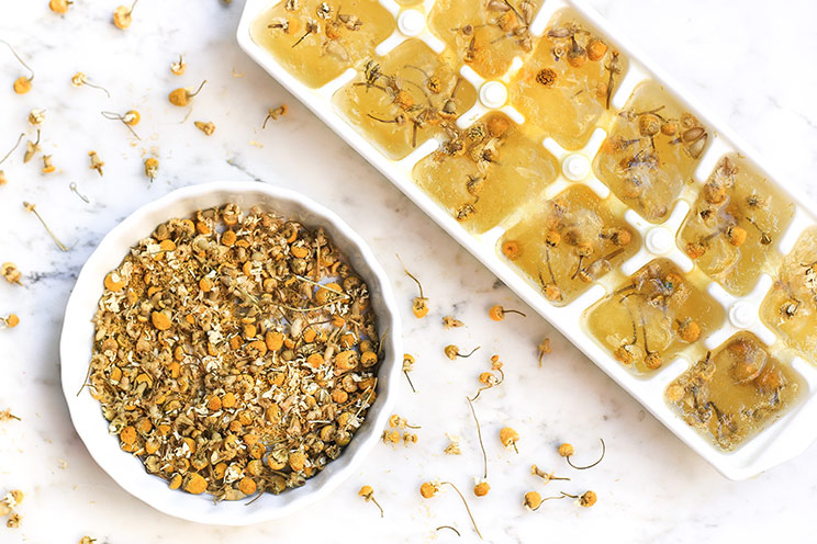 6 Ice Cube Recipes for Face - Relaxing Chamomile Ice Cubes