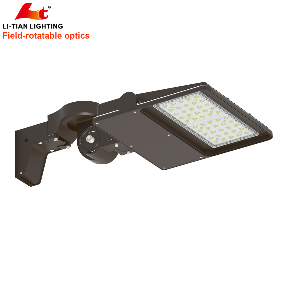 Area Site Lighting LTOK-100W
