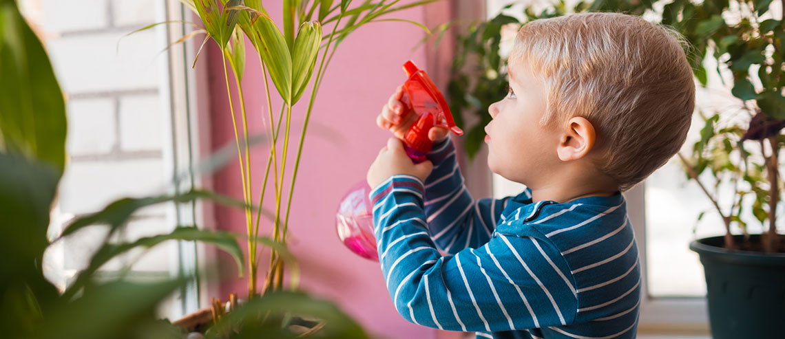 small child watering indoor plants