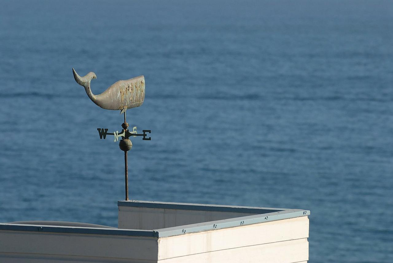 weathercock-71051_1280
