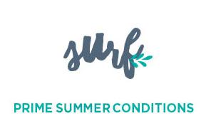 summer-surf11