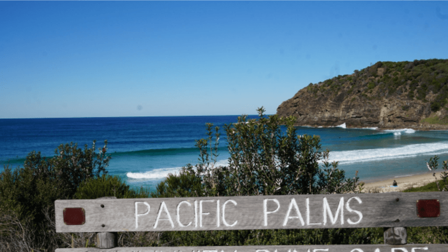 Pacific Palms Must-Do's