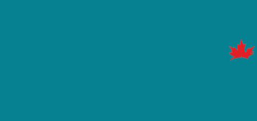 The Shotmaker Camera Cars