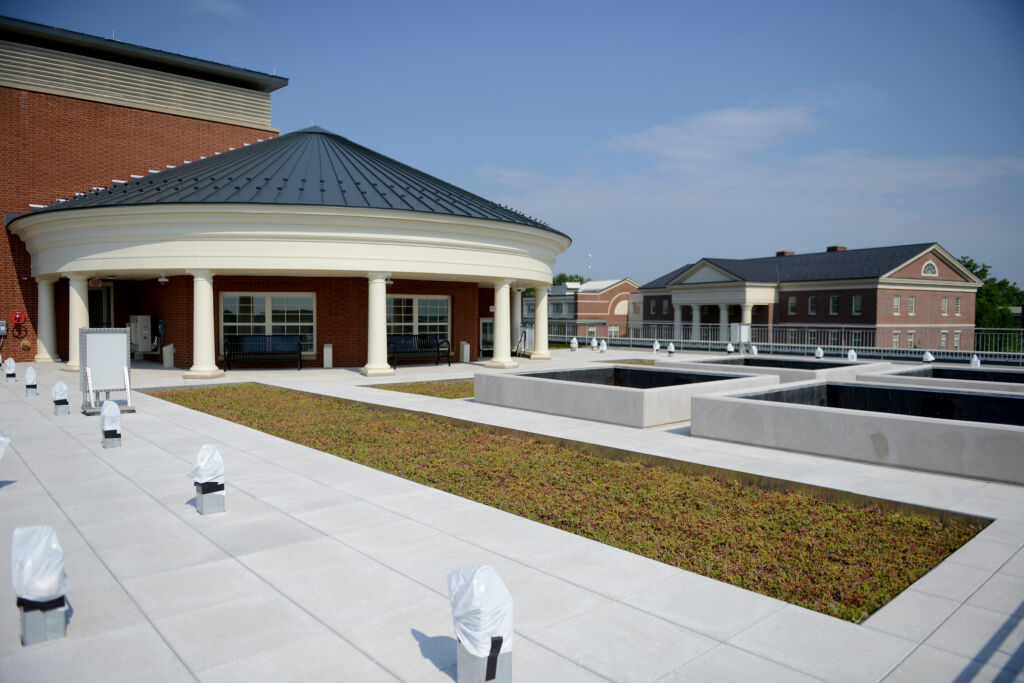 A green roof on top of Academic East