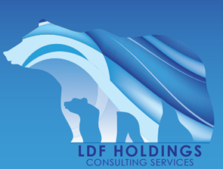 LDF Consulting Services