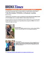 06-04-2017 Bronx Times_Volunteers Revitalize UH Garden