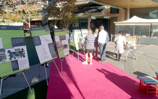 Hornsby Park Feedback and Info Session