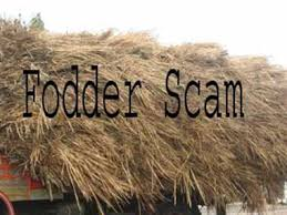 THREE TO FOUR YEARS RIGOROUS IMPRISONMENT TO 16 ACCUSED IN A FODDER SCAM CASE