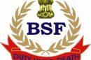 BSF seizes 3.830 Kg Heroin in Ferozpur Sector