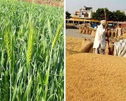 कृषि कानून-आत्मनिर्भर भारत को बढ़ावा