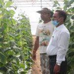 शाबाश रविन्द्र, 13 वर्ष की नौकरी छोड़, पॉलीहाउस से कमा रहे लाखों