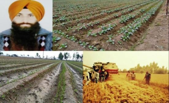 Ferozepur farmer sets precedent for fellow-farmers for managing stubble