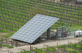 Micro Irrigation scheme will boost farmers' livelihood in Haryana.