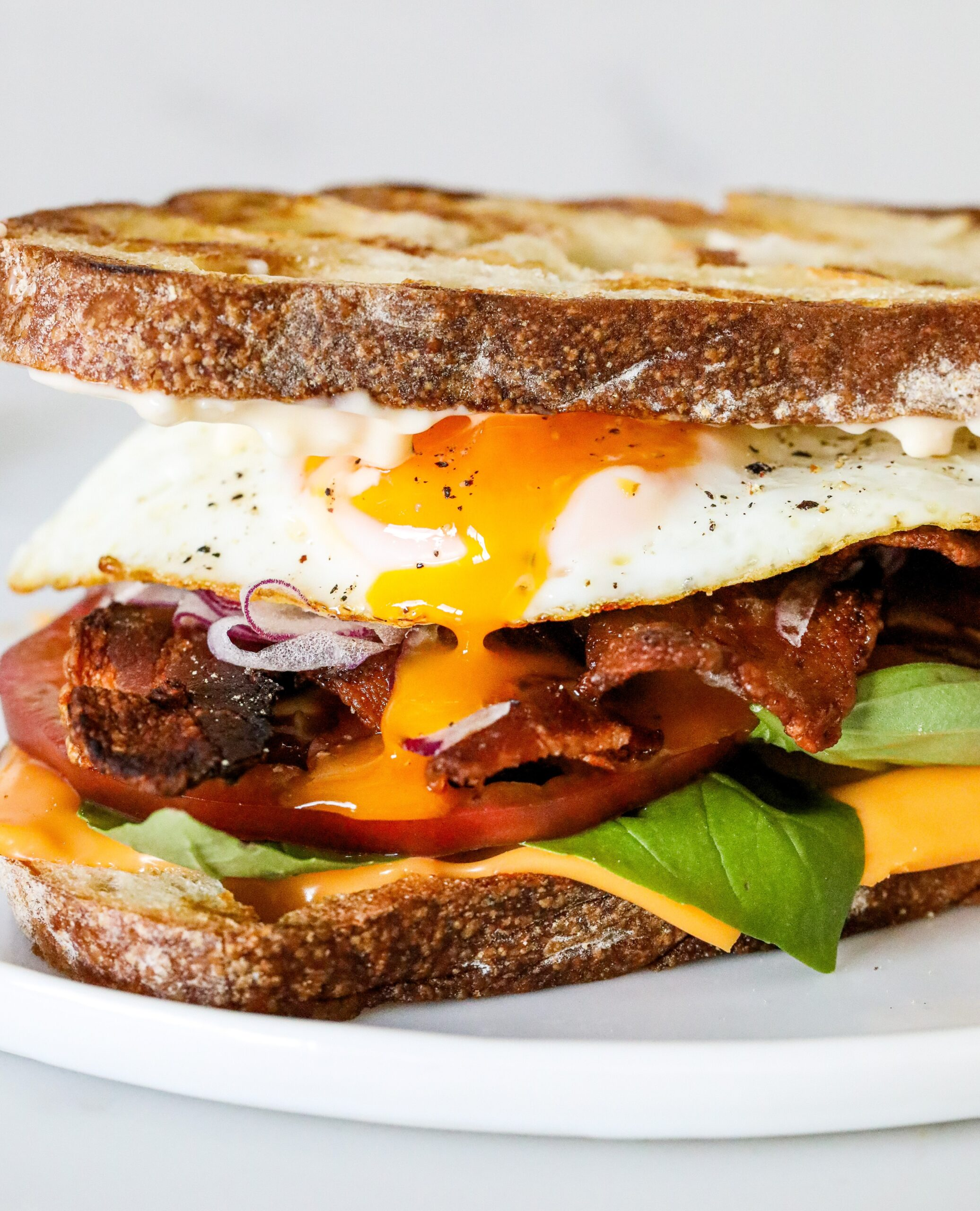 Fried Egg Breakfast Sandwich