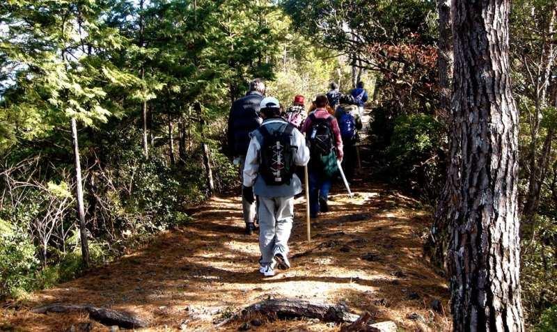 Kumano Kodo hike