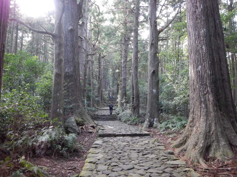 Kumano Kodo hiking