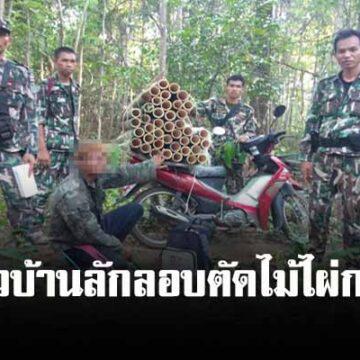 เจ้าหน้าที่อุทยานภูจองนายอย รวบชาวบ้านลักลอบตัดไม้ไผ่กลางป่า ฟันผิดหลายข้อหา !
