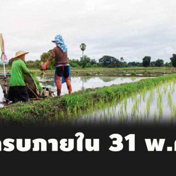 ธ.ก.ส. ยืนยัน!โอนเงินเยียวยาให้เกษตรกร ภายในวันที่ 31 พ.ค.63