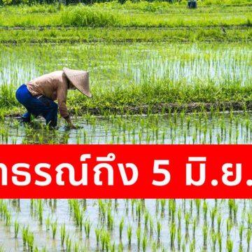 เงินเยียวยา ถึงมือเกษตรกรแล้วกว่า 7 ล้านราย ย้ำยื่นอุทธรณ์ถึง 5 มิ.ย. นี้