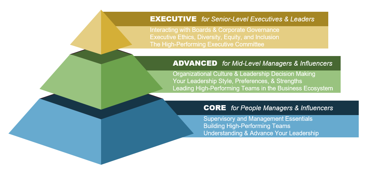 Leadership Development Program Structure