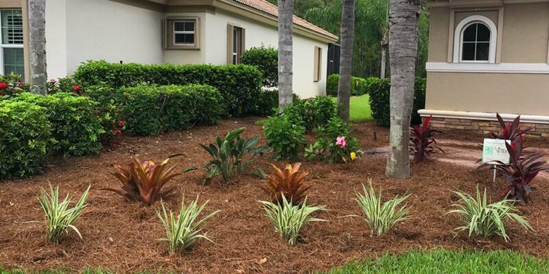 Peer Landscaping design services