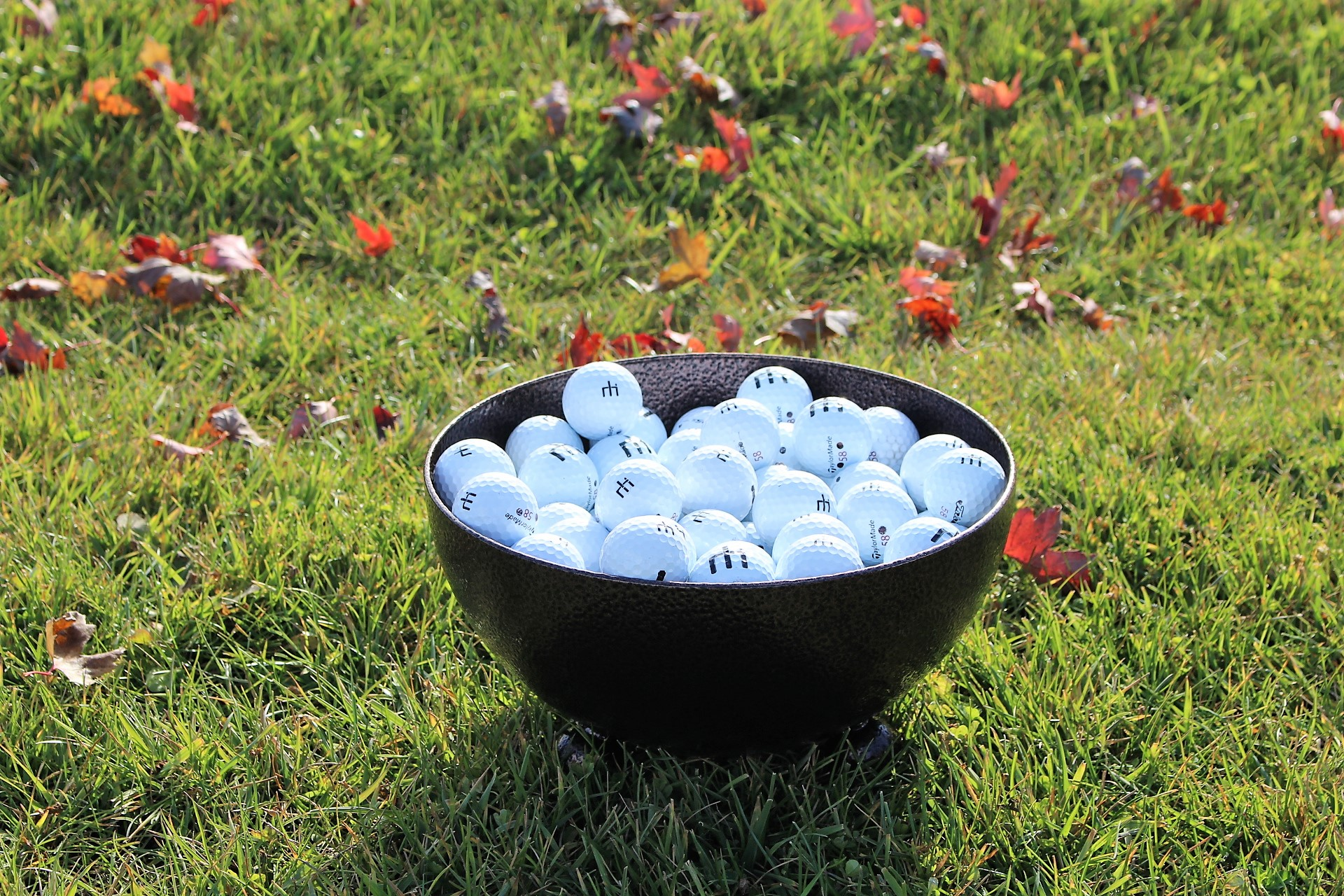 Ball-Staging-Bowl-4