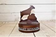 2_Member-Guest-Trophy-_Ballyhack