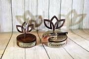 Battle Awards -Gailardia