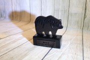 Bear Trophy -Toscana