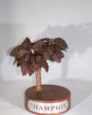 Cottonwood Tree Award -Champions Run