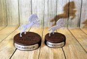 Horserace Awards -University of Central Oklahoma