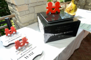 Trophies -children's hospital awards