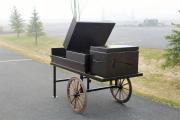 Driving Range Carts --Mountaintop