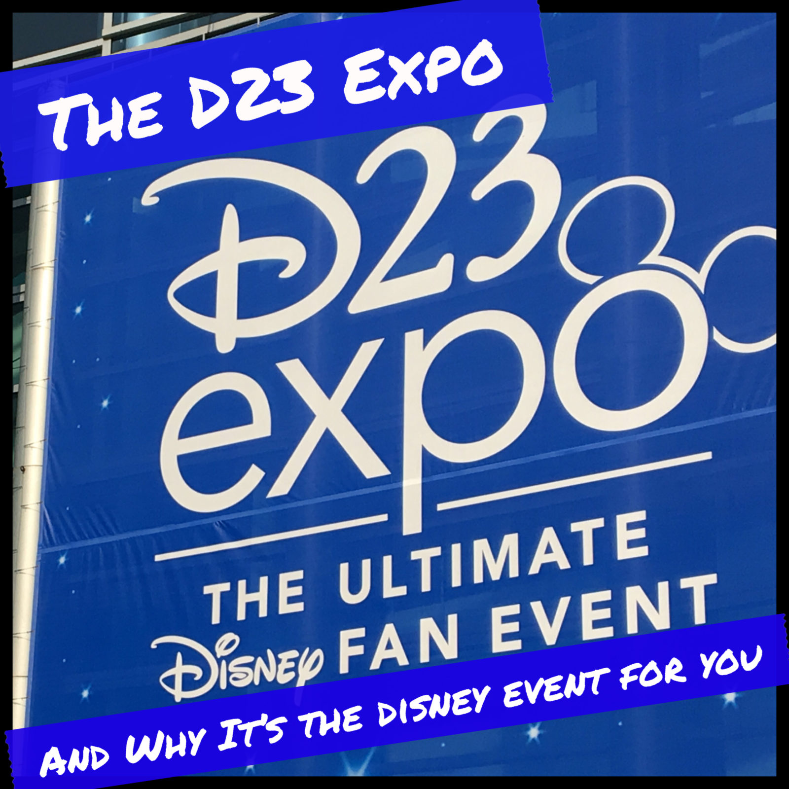 Episode 12 - The D23 Expo