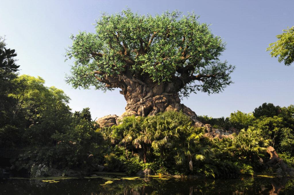 Tree of Life - Disney's Animal Kingdom - Disney Vacation Club 101