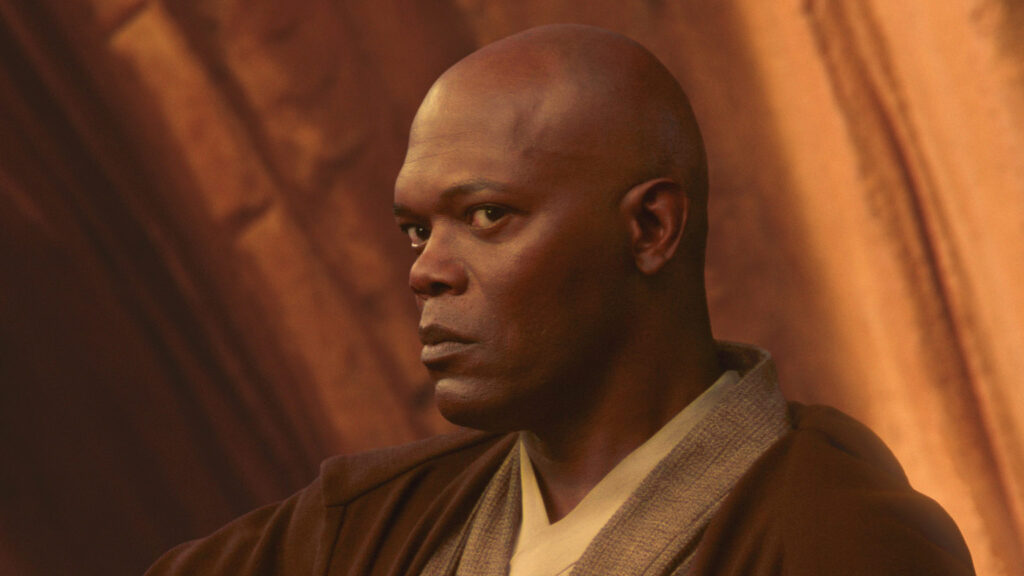 Mace Windu - Which Jedi Are You Quiz
